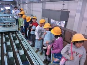 3年生のピーマン出荷場に見学にいきました。すごい機械だ!\