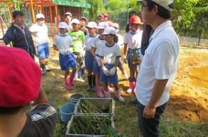 5校時,いよいよビオトープに在来の水草を植えます。アサザ基金さんは,ショウブやアサザ,い草などたくさんの種類の水辺草を用意して下さいました。\