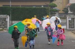 綺麗な傘の花です。校門を入ると,傘の花がつぼみになります。\