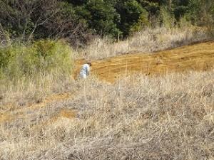 地層の色の違うところの土を採取しています。\