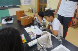 ?年生が,理科室でホウセンカの葉を顕微鏡で観察していました。\