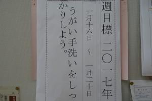 DSC08013