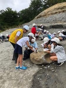いよいよ化石発掘、何か見つけたかな?\